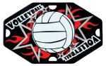 Street Tags -Volleyball Volleyball Trophy Awards
